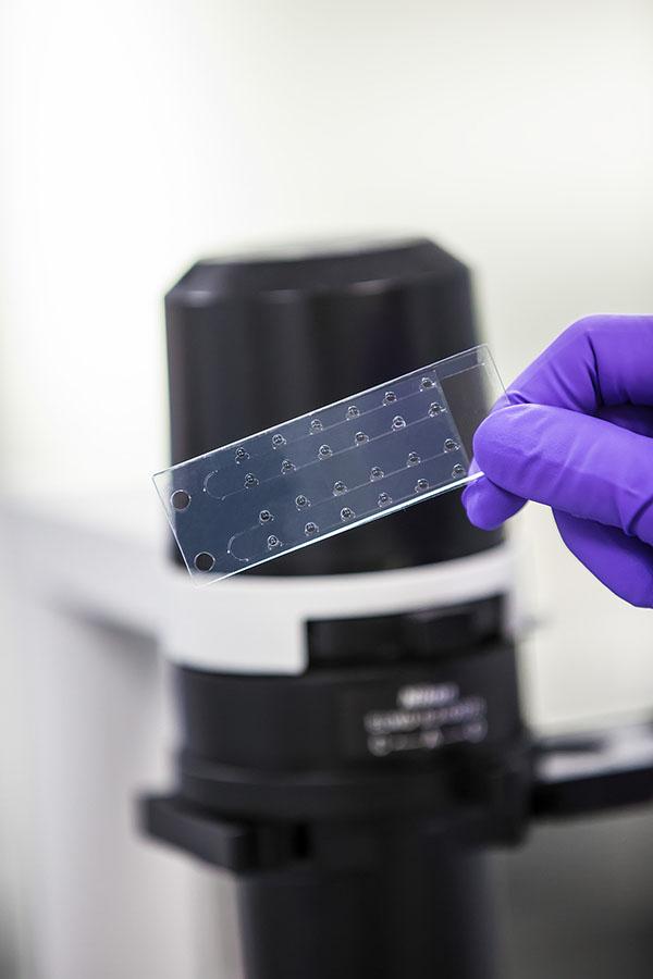 Luxinnovation Biothechnologies